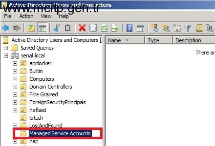 Yönetimsel Servis Hesapları (Managed Service Accounts) (MSA)