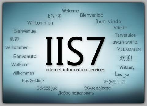 Windows Server 2008 R2 IIS  7.0  Web Sitesi Yayınlama ve DNS Host Name Kaydı