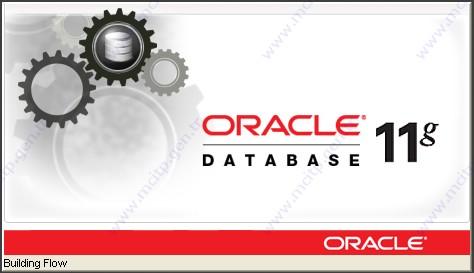 Windows Server 2012 üzerine Oracle 11g Release 2 kurulumu