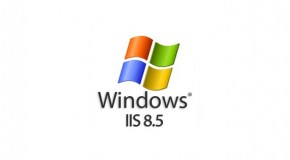 IIS 8.5 Idle Worker Process Page –Out