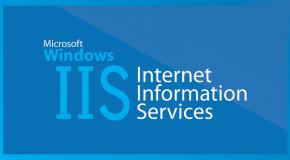 IIS de Site ve AppPool Import/Export işlemi